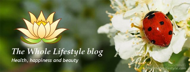 The Whole Lifestyle website banner