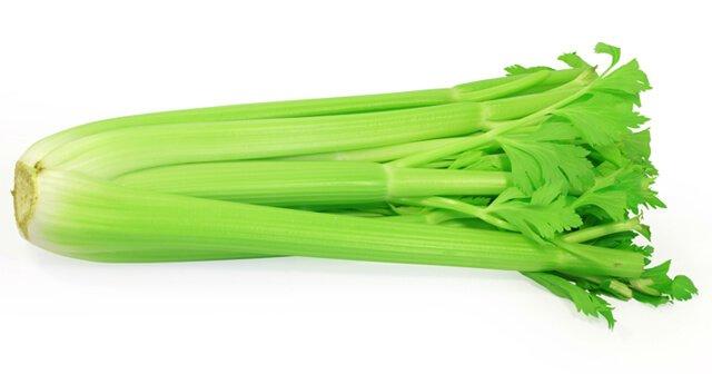 Stalk of celery against white background
