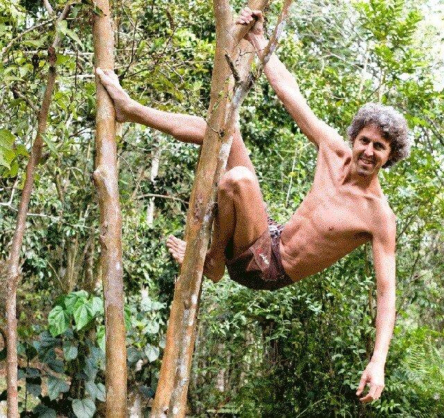 Grant Campbell climbing a guava tree