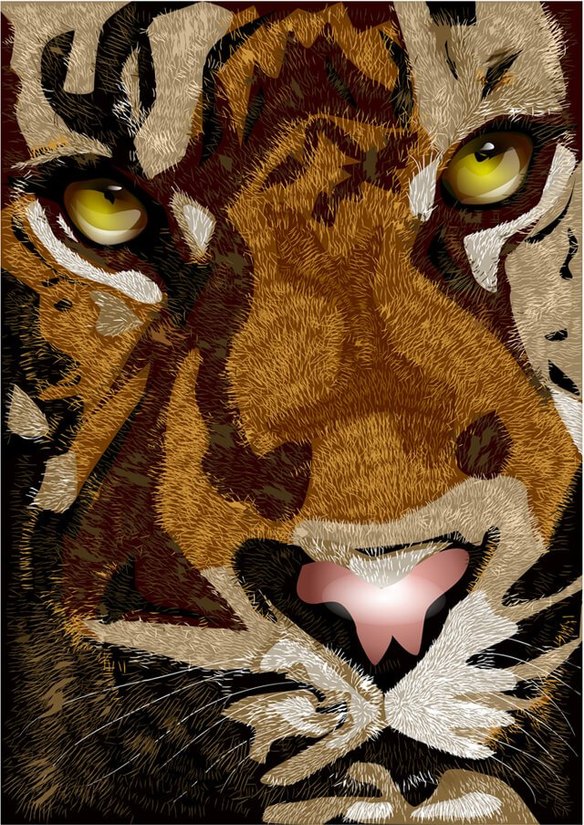 Illustration of a tiger's face up close