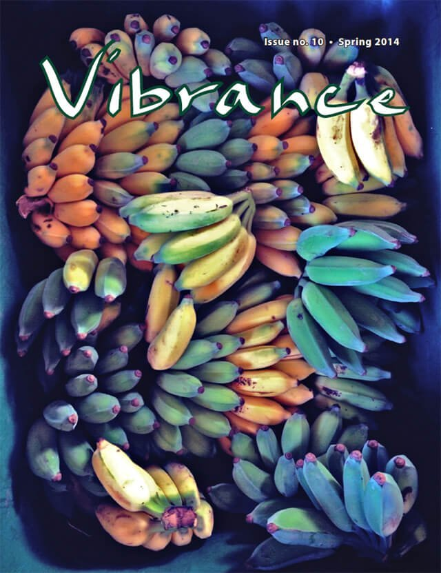 Cover of Vibrance magazine issue No. 10