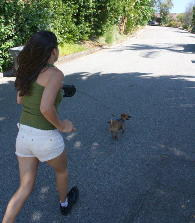 Jesi DiPalo runs with her dog in her neighborhood