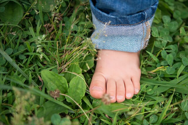 A bare foot planted on grass