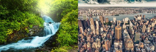 Natural vs. urban environment