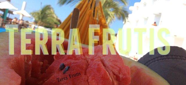 Banner for Terra Frutis
