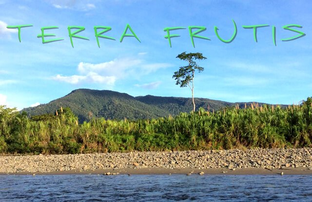 Banner for Terra Frutis with a water source present