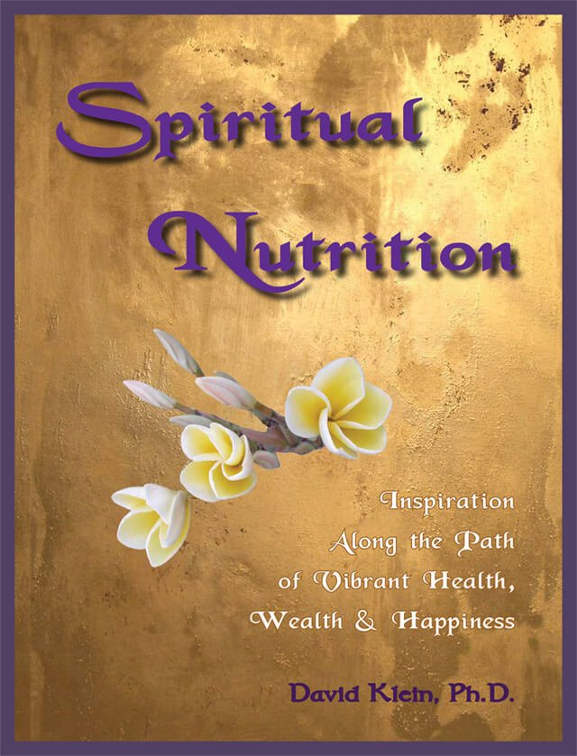 Cover of Spiritual Nutrition by Dr. David Klein