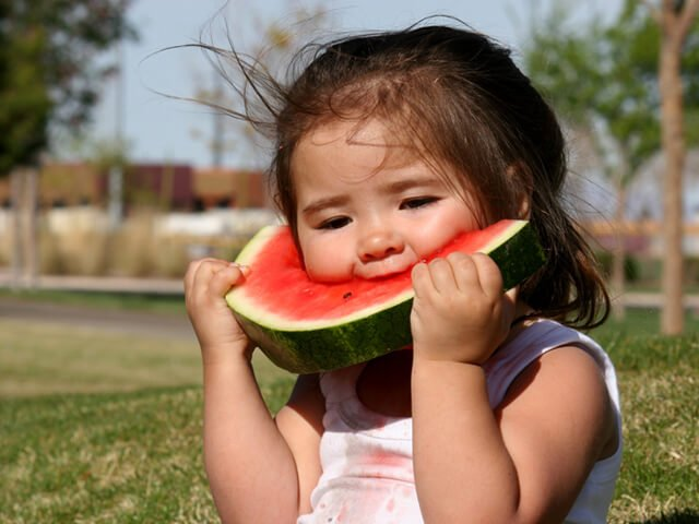 A young girl eats watermelon in a field