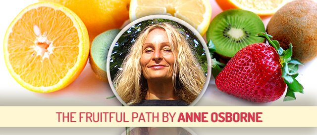 Guest Stories banner for Anne Osborne's The Fruitful Path