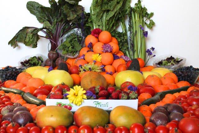 A food haul of Alicia Grant's