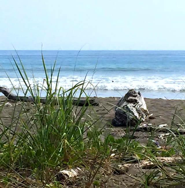 Hacienda Baru beach near Finca de Vida