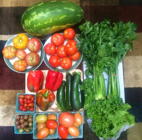 A haul of fruits and vegetables from John Fallucca's CSA