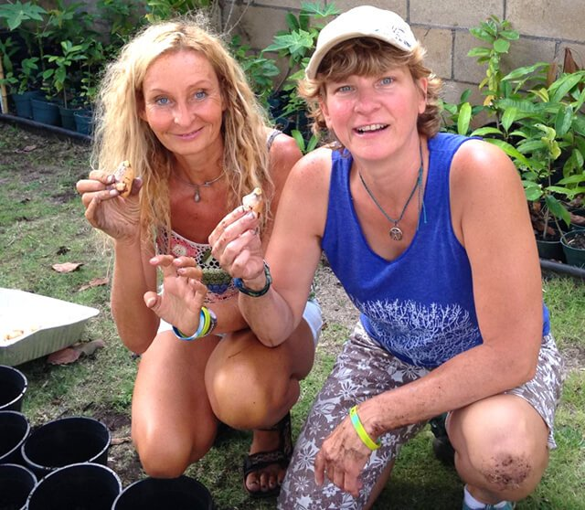 Itsy Sweeney and Anne Osborne at the 2015 Woodstock Fruit Festival Hawaii