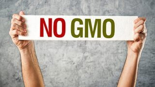 "Man's hands hold a sign saying ""No GMO"""